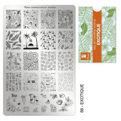 MOYRA - STAMPING PLATE 66 EXOTIQUE