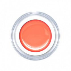 Neon Apricot