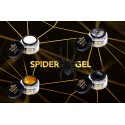 D'Or Nails SPIDER GEL